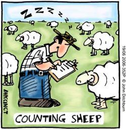 sheep_250