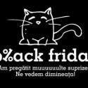 emag_pisica_2308
