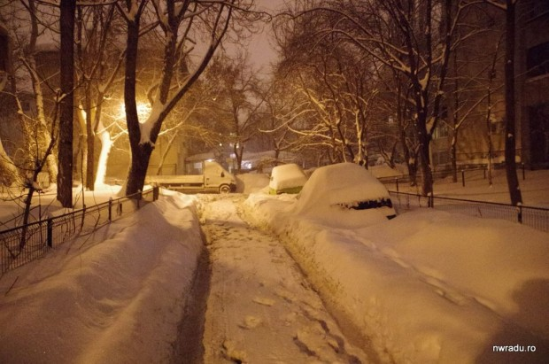 2012_02_13_iarna