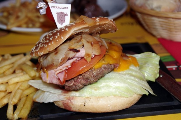burger_hipopotamus