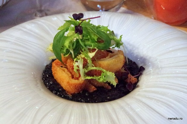 joseph_hadad_restaurant_calamari_linte_07