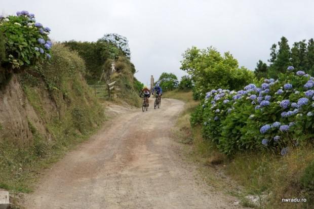 azore_sao_miguel_2_08_biciclete