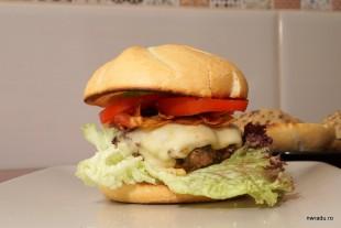 burger_nwradu_lidl_31_asamblare