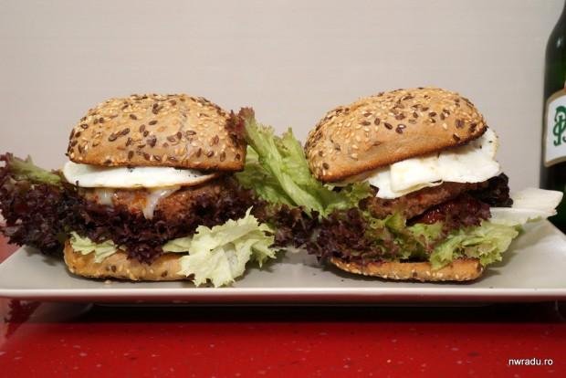 burger_nwradu_lidl_38_asamblare