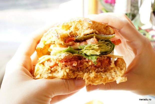 aria_gourmet_burger_11_latino_burger